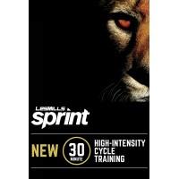 [Pre Sale] 2019 Q2 Routines SPRINT 16 DVD + CD+ waveform graph